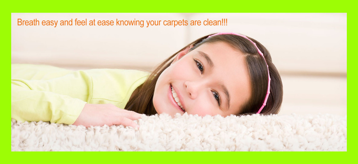 carpet cleaning in greenville sc