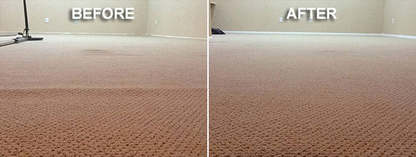 Mike Bryan Carpet Cleaning